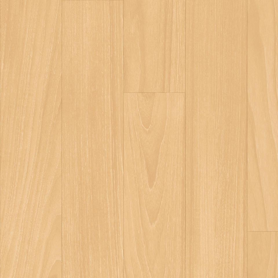 Performa New Maple