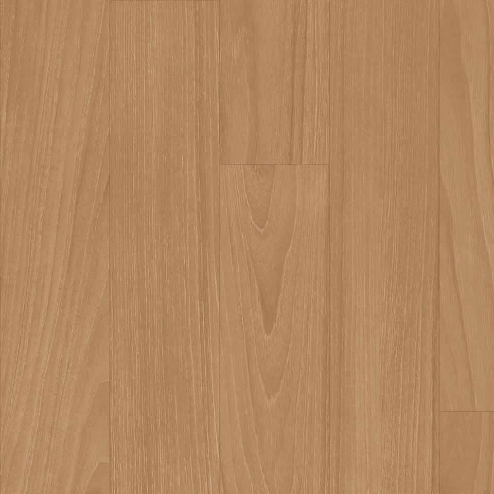 Performa Paela