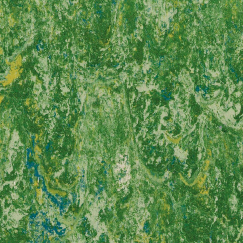 Veneto Rainforest 650