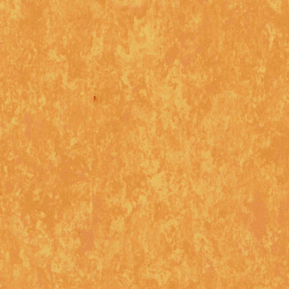 Veneto Sunflower 628
